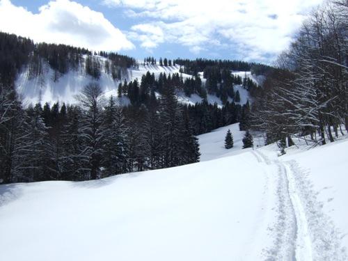 Foto: hofchri / Ski Tour / Zwölferhorn (1521m) von Tiefbrunnau über Stubneralm / 16.12.2008 19:03:10