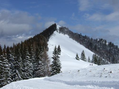 Foto: hofchri / Ski Tour / Zwölferhorn (1521m) von Tiefbrunnau über Stubneralm / 16.12.2008 19:03:21