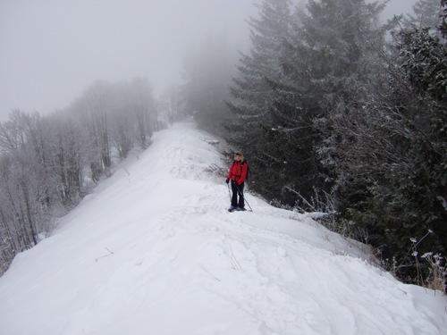Foto: hofchri / Ski Tour / Zwölferhorn (1521m) von Tiefbrunnau über Stubneralm / 16.12.2008 19:03:43