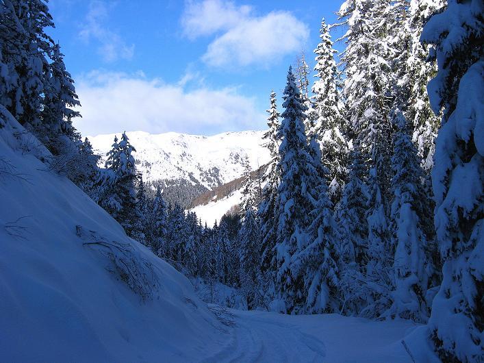 Foto: Andreas Koller / Ski Tour / Vom Durnholzer See auf das Schrotthorn (2590m)  / Rückblick aus dem Großalmtal / 16.12.2008 01:30:17