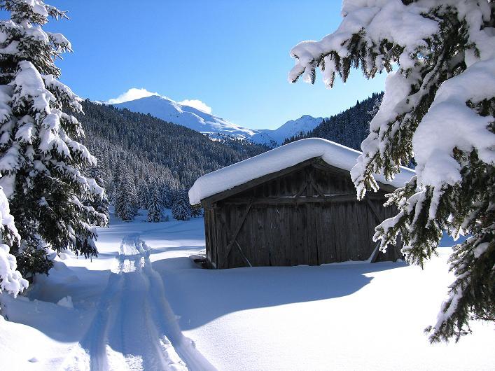 Foto: Andreas Koller / Ski Tour / Vom Durnholzer See auf das Schrotthorn (2590m)  / romantisches Großalmtal mit Plankenhorn / 16.12.2008 01:28:45