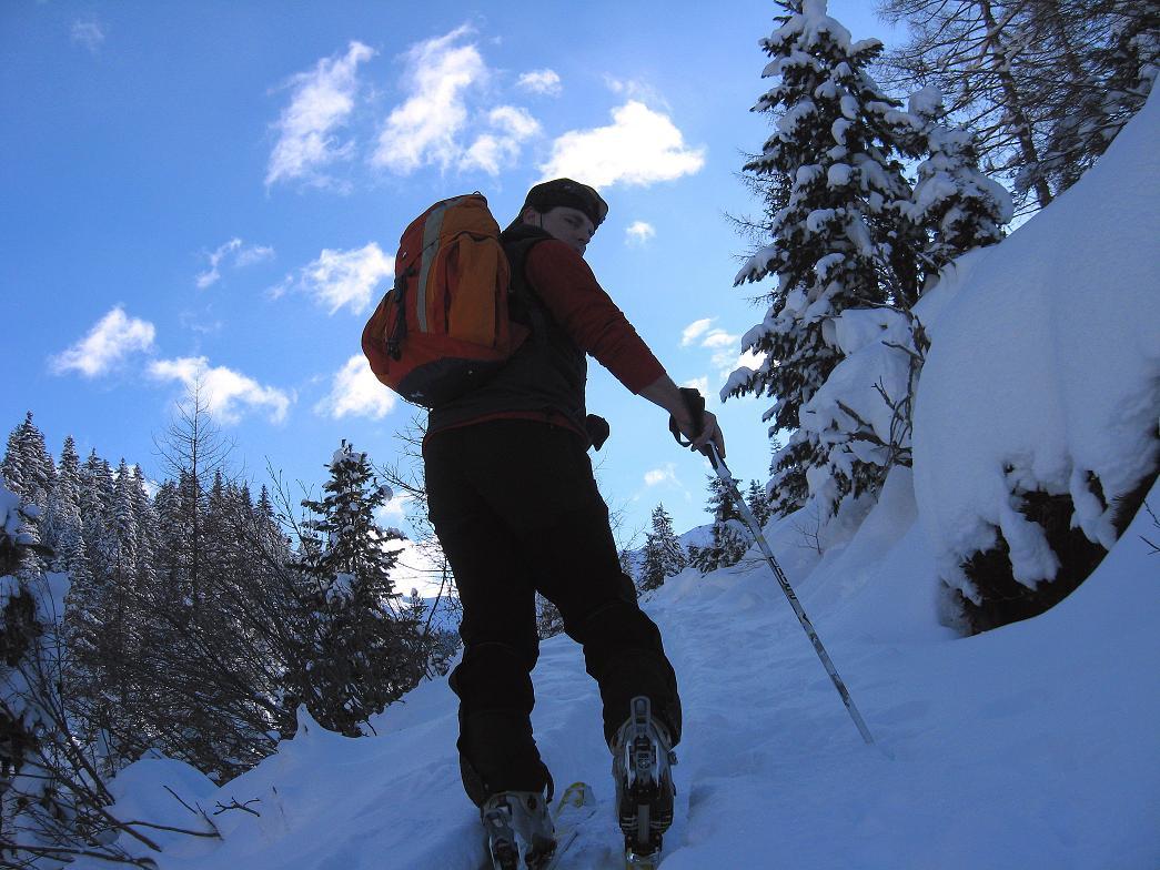 Foto: Andreas Koller / Ski Tour / Vom Durnholzer See auf das Schrotthorn (2590m)  / Zunächst nur kurze Steilstufen im Wald / 16.12.2008 01:28:15