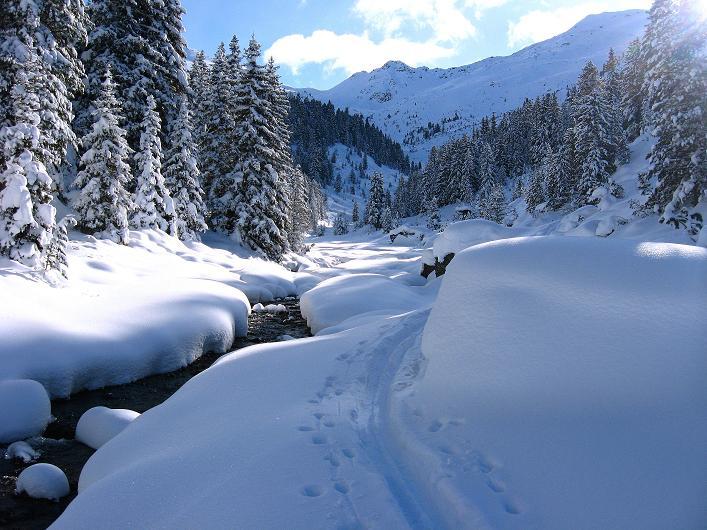 Foto: Andreas Koller / Ski Tour / Vom Durnholzer See auf das Schrotthorn (2590m)  / Aufstieg im oberen Talboden entlang des Bachs / 16.12.2008 01:27:52