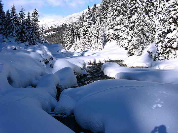 Foto: Andreas Koller / Ski Tour / Vom Durnholzer See auf das Schrotthorn (2590m)  / Tiefverschneites Großalmtal / 16.12.2008 01:27:23