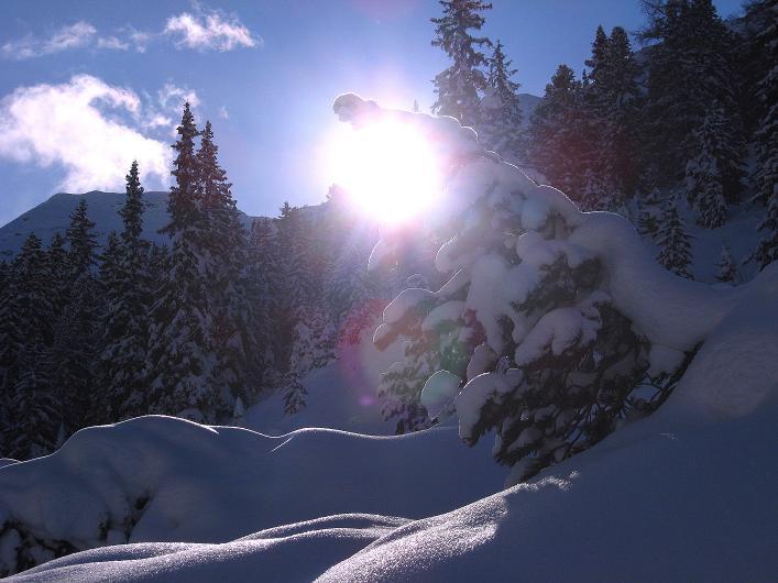 Foto: Andreas Koller / Ski Tour / Vom Durnholzer See auf das Schrotthorn (2590m)  / Im Gegenlicht ist die Kassianspitze (2581 m) zu erkennen / 16.12.2008 01:26:59