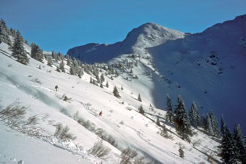 Foto: Kurt Schall / Ski Tour / Schüttkogel 2049 m, Schafzähne 1917 m, Horninger Zinken 1989 m, von Westen / Abfahrt Horniger Zinken / 16.12.2008 13:06:59