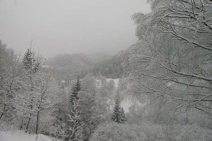 Foto: Andreas Koller / Ski Tour / Der Aibel über dem Mürztal (1394m) / 17.12.2008 00:28:44