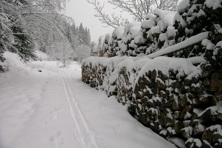Foto: Andreas Koller / Ski Tour / Der Aibel über dem Mürztal (1394m) / 17.12.2008 00:28:37