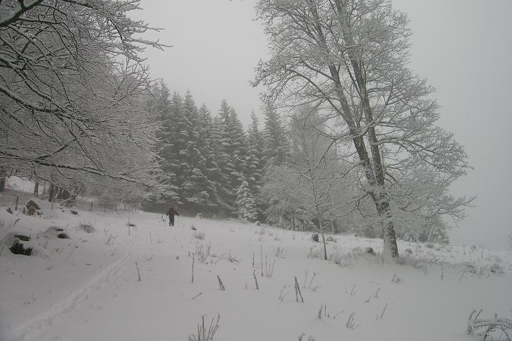 Foto: Andreas Koller / Ski Tour / Der Aibel über dem Mürztal (1394m) / 17.12.2008 00:27:51