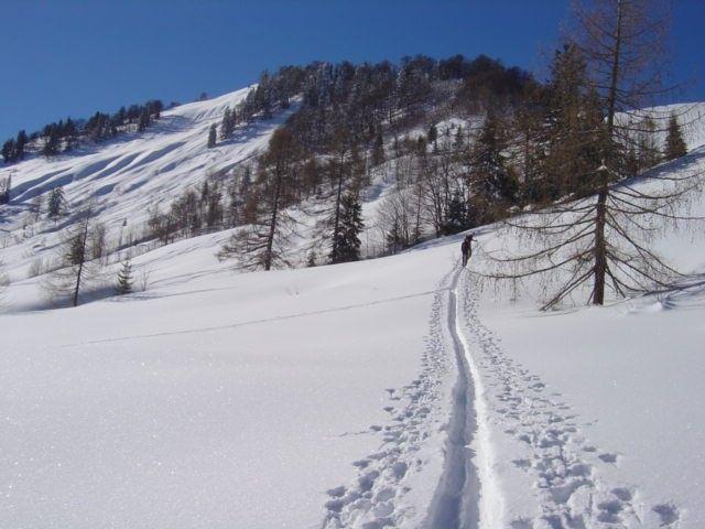 Foto: Manfred Karl / Ski Tour / Vom Satzstein auf das Auhofköpfl / Über schöne Hänge erfolgt der Aufstieg zum Rücken / 18.12.2008 08:28:12