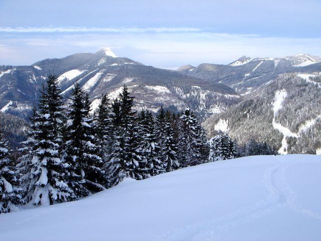 Foto: Manfred Karl / Ski Tour / Vom Satzstein auf das Auhofköpfl / Auf dem flachen Rücken ober der Alm / 18.12.2008 08:26:57