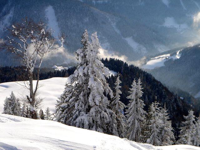 Foto: Manfred Karl / Ski Tour / Vom Satzstein auf das Auhofköpfl / Blick in die Taugl / 18.12.2008 08:23:26