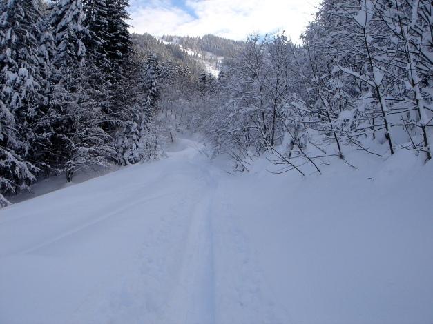 Foto: Manfred Karl / Ski Tour / Vom Satzstein auf das Auhofköpfl / Kurz nach dem Bauernhof / 18.12.2008 08:31:25