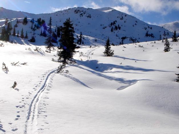 Foto: Manfred Karl / Ski Tour / Zwei leichte Gipfel über dem Kessel der Planneralm / Blick zur Jochspitze / 18.12.2008 09:32:57