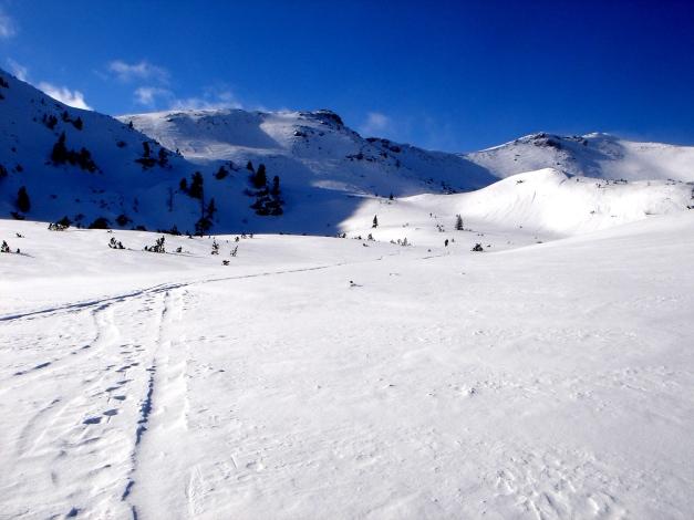 Foto: Manfred Karl / Ski Tour / Zwei leichte Gipfel über dem Kessel der Planneralm / Gemütliches Schigelände / 18.12.2008 09:32:34