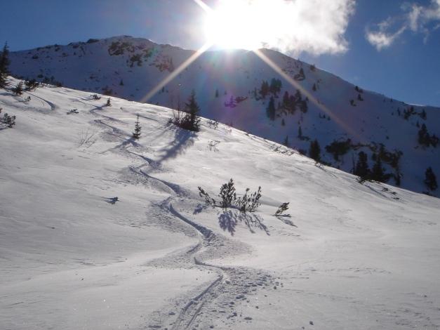Foto: Manfred Karl / Ski Tour / Zwei leichte Gipfel über dem Kessel der Planneralm / Pulverschnee auch im unteren Teil / 18.12.2008 09:19:10
