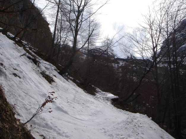 Foto: Manfred Karl / Ski Tour / Skihörndl - Frühjahrsklassiker in den Loferer Steinbergen / Letzte Schwünge vor der Unterbrechungsstelle / 18.12.2008 10:08:57