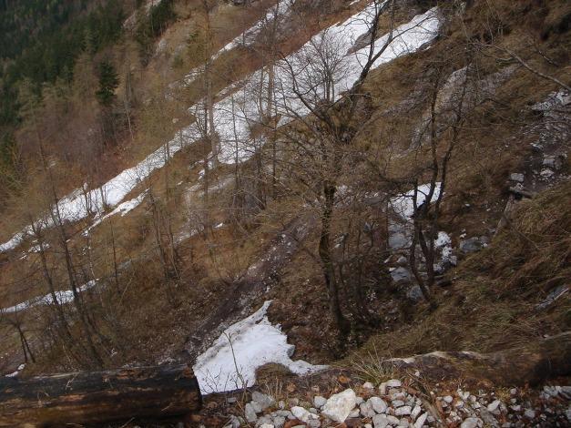 Foto: Manfred Karl / Ski Tour / Skihörndl - Frühjahrsklassiker in den Loferer Steinbergen / Das bewaldete untere Teilstück ist im Frühjahr meist schon schneefrei / 18.12.2008 10:08:02