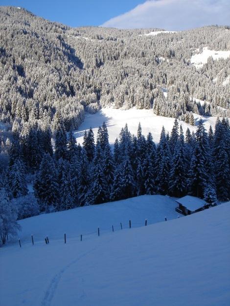 Foto: Manfred Karl / Ski Tour / Aus dem Windautal auf das Gerstinger Joch / Die unteren Wiesenhänge / 18.12.2008 11:00:36