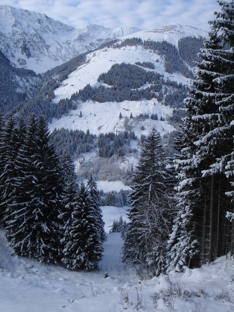 Foto: Manfred Karl / Ski Tour / Aus dem Windautal auf das Gerstinger Joch / Die schmale Schneise kurz vor Erreichen des Almweges / 18.12.2008 10:59:39