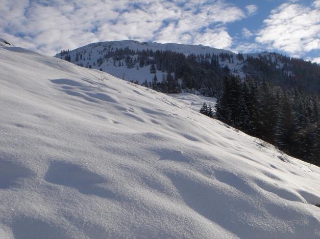Foto: Manfred Karl / Ski Tour / Aus dem Windautal auf das Gerstinger Joch / Unberührte Hänge zum Gerstinger Joch / 18.12.2008 10:58:55