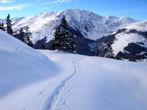 Foto: Manfred Karl / Ski Tour / Aus dem Windautal auf das Gerstinger Joch / Steinbergstein / 18.12.2008 10:56:12