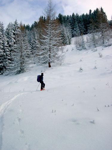 Foto: Kurt Schall / Ski Tour / Schwalbenwand 2011 m / 18.12.2008 10:51:23