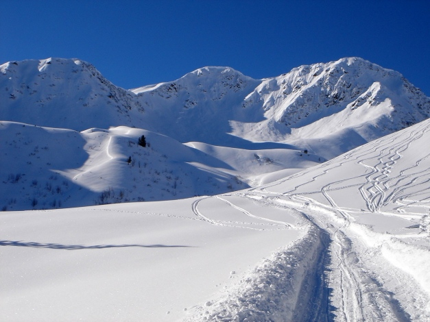 Foto: Manfred Karl / Ski Tour / Drei leichte Schigipfel über der Schwarzwasserhütte / Ochsenhofer Köpfe - Grünhorn / 18.12.2008 17:06:26