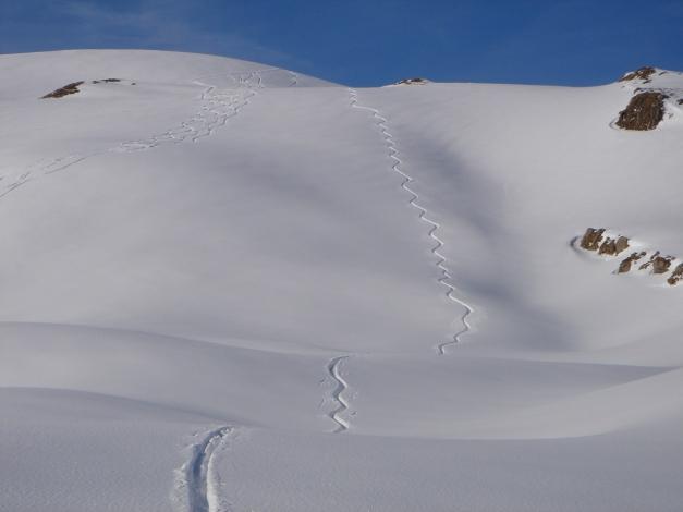 Foto: Manfred Karl / Ski Tour / Drei leichte Schigipfel über der Schwarzwasserhütte / Abfahrt vom Berlingersköpfle / 18.12.2008 16:47:07