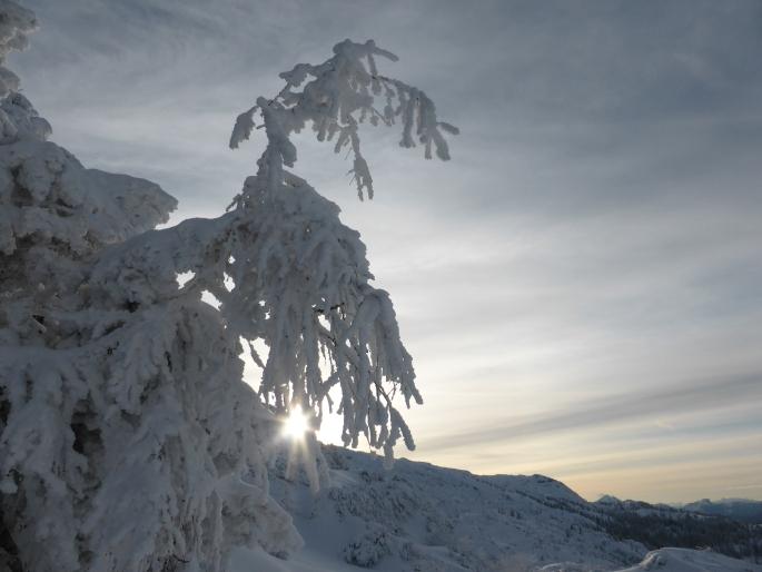 Foto: Manfred Karl / Skitour / Auf einen Hausberg der Salzburger Tourengeher / 18.03.2015 20:47:16