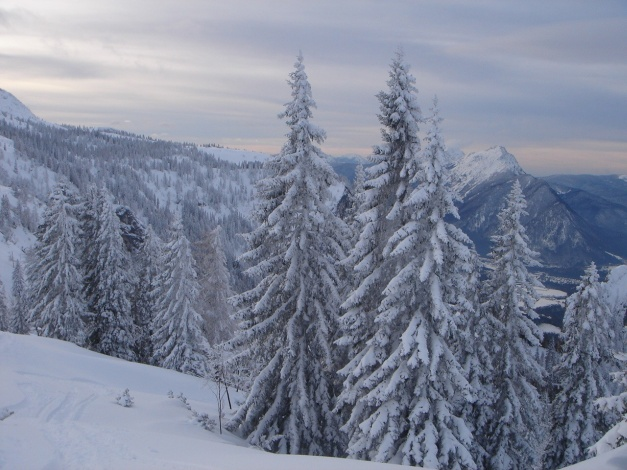 Foto: Manfred Karl / Skitour / Auf einen Hausberg der Salzburger Tourengeher / Oberhalb der Schweigmühlalm / 18.12.2008 17:45:26