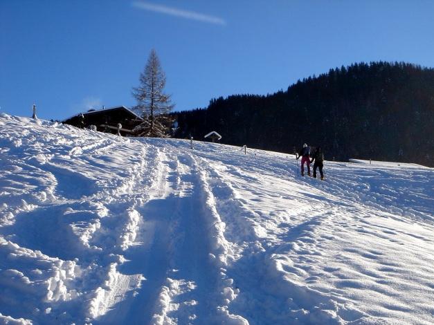 Foto: Manfred Karl / Ski Tour / Von Oberau auf das Roßfeld / Nicht präparierte Piste im unteren Teil / 18.12.2008 18:08:46