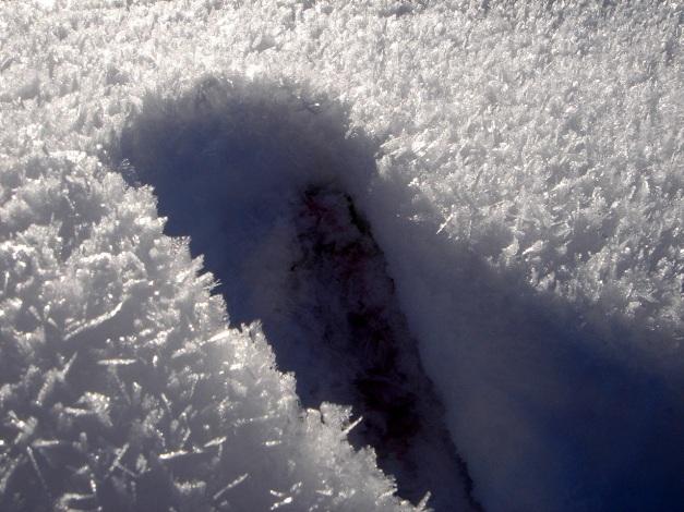 Foto: Manfred Karl / Ski Tour / Von Oberau auf das Roßfeld / Reifkristalle / 18.12.2008 18:07:52