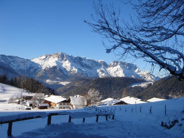 Foto: Manfred Karl / Ski Tour / Von Oberau auf das Roßfeld / Im unteren Teil des Anstieges, kurz danach zweigt die DAV-Route von der Piste ab / 18.12.2008 18:07:14