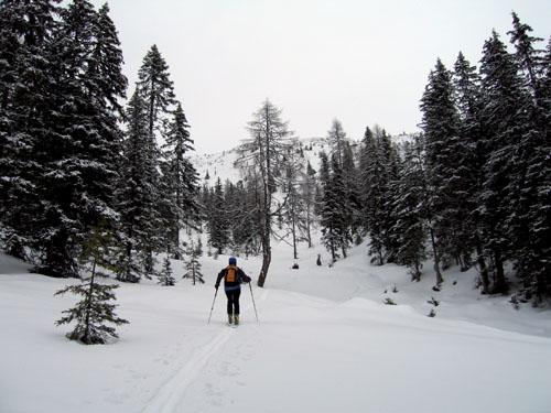 Foto: Kurt Schall / Ski Tour / Mölbegg 2080 m, Edelweißspitze 1990 m, Von Westen über die Messneralm / Aufstieg Mölbegg / 19.12.2008 08:04:20