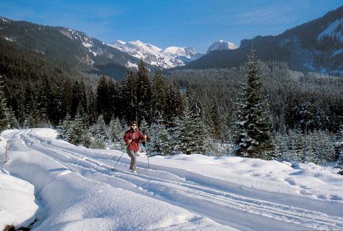 Foto: Kurt Schall / Ski Tour / Kampl 1685 m / Kampl / 19.12.2008 08:35:56
