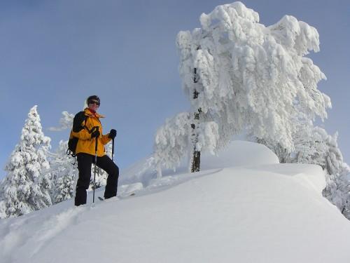 Foto: hofchri / Ski Tour / Faistenauer Schafberg (1559 m) von Tiefbrunnau über Schafbachalm / 10.02.2009 15:09:09