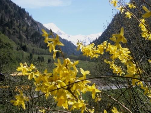 Foto: hofchri / Ski Tour / Hocheiser (3206 m) vom Enzingerboden via Rötenkogel / 19.12.2008 22:24:12