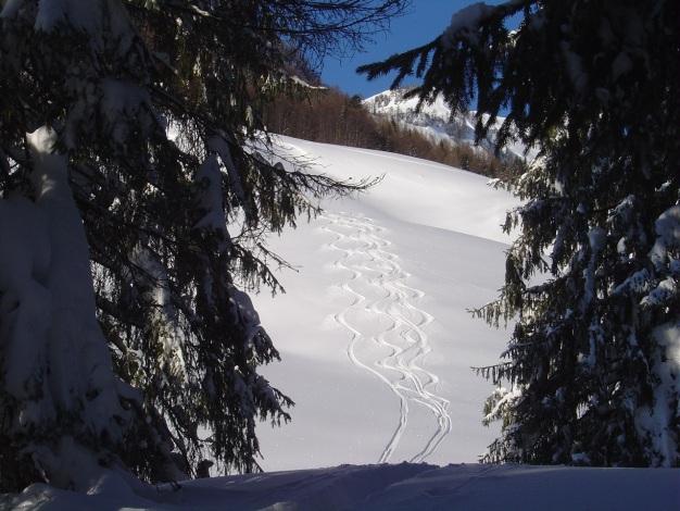 Foto: Manfred Karl / Ski Tour / Hoher First und Dürlstein aus dem Ackersbachgrund / Vorfreude / 20.12.2008 12:42:54