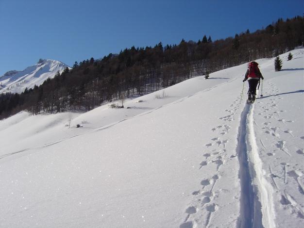 Foto: Manfred Karl / Ski Tour / Hoher First und Dürlstein aus dem Ackersbachgrund / Aufstieg aus dem Ackersbachgrund, links Hochwieskopf / 20.12.2008 12:41:47