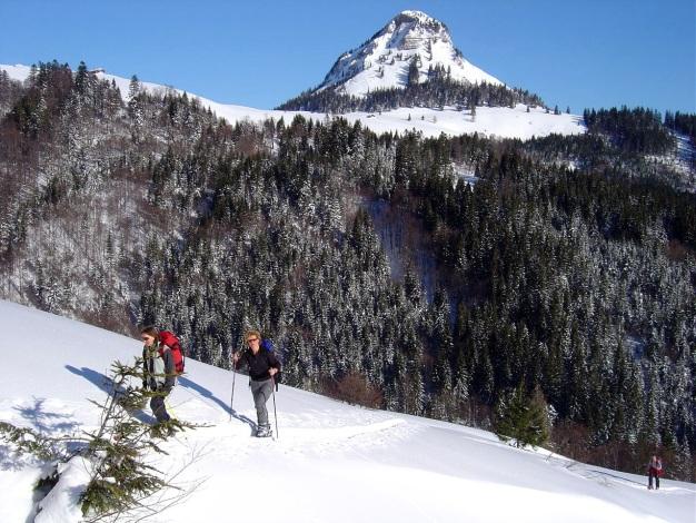 Foto: Manfred Karl / Ski Tour / Hoher First und Dürlstein aus dem Ackersbachgrund / Holzeck / 20.12.2008 12:41:19