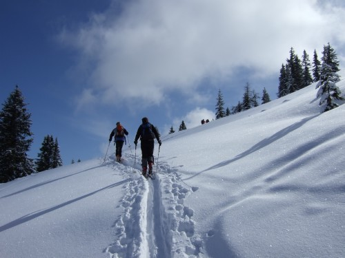 Foto: hofchri / Ski Tour / Hochkeil (1782m) vom Arthurhaus / 21.12.2008 11:08:54