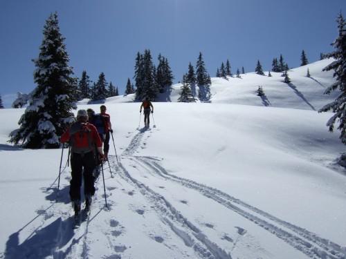 Foto: hofchri / Ski Tour / Hochkeil (1782m) vom Arthurhaus / 21.12.2008 11:09:08