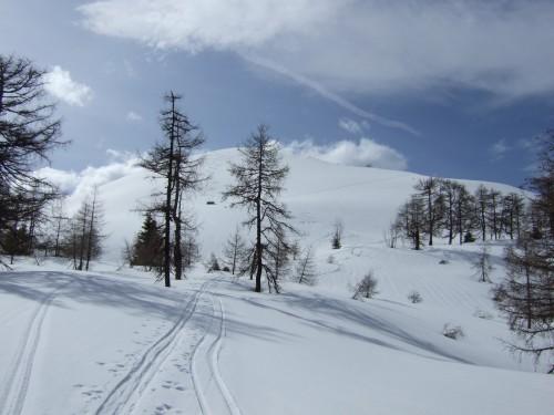 Foto: hofchri / Ski Tour / Pitschenberg (1720m) und Labenberg (1642m) von der Postalm / 21.12.2008 13:32:56