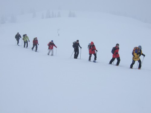 Foto: hofchri / Ski Tour / First (Gamsridl, 1900 m) von Elmau über Widdersbergalm / 23.12.2008 12:21:40