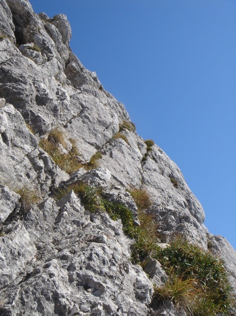 Foto: Manfred Karl / Kletter Tour / Südwand III+ / Die schrägen Bänder zum Ausstiegskamin / 17.07.2009 17:49:00