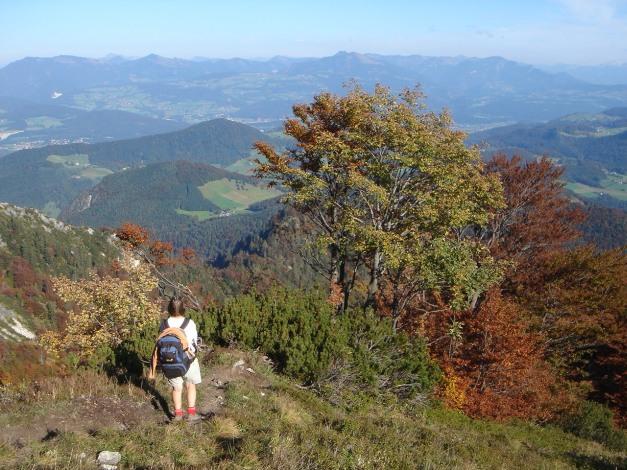 Foto: Manfred Karl / Kletter Tour / Südwand III+ / Schön wars! / 17.07.2009 17:53:49