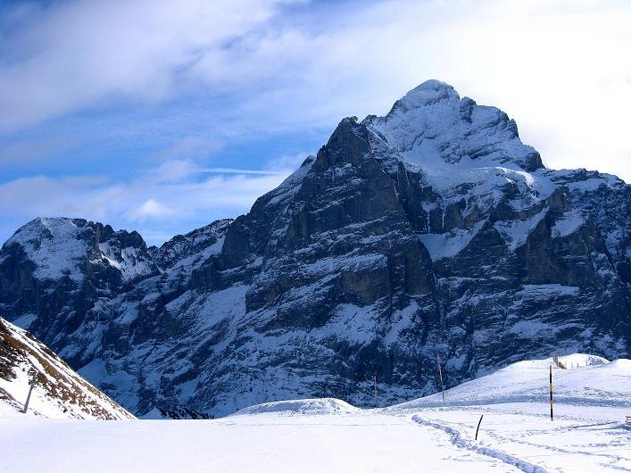 Foto: Andreas Koller / Schneeschuh Tour / Schneeschuh-Trail aufs Faulhorn (2681m) / Das Wetterhorn mit seiner N-Wand (3701 m) / 06.01.2009 23:50:00