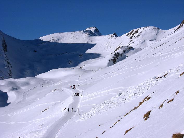 Foto: Andreas Koller / Schneeschuh Tour / Schneeschuh-Trail aufs Faulhorn (2681m) / Schöner Anstieg und beliebte Rodeltour auf das Faulhorn / 06.01.2009 23:45:11