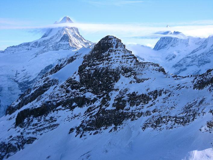 Foto: Andreas Koller / Schneeschuh Tour / Schneeschuh-Trail aufs Faulhorn (2681m) / Schreckhorn (4078 m) und Finsteraarhorn (4273 m), davor das Simelihorn (2751 m) / 06.01.2009 23:25:10